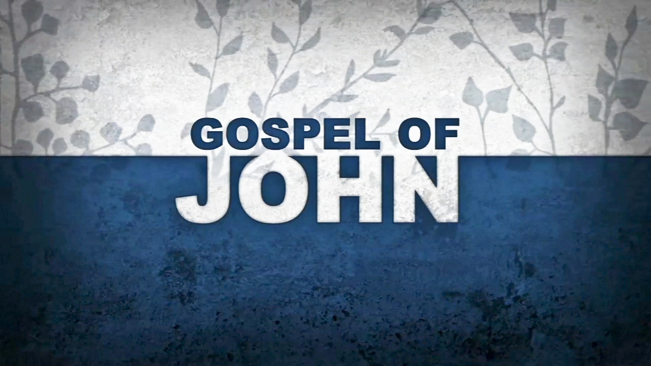 gospel of john Whatever else you may enjoy about jesus, john's gospel wants you to know and treasure jesus in his infinite majesty.