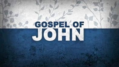 Gospel of John  (1 of 1)